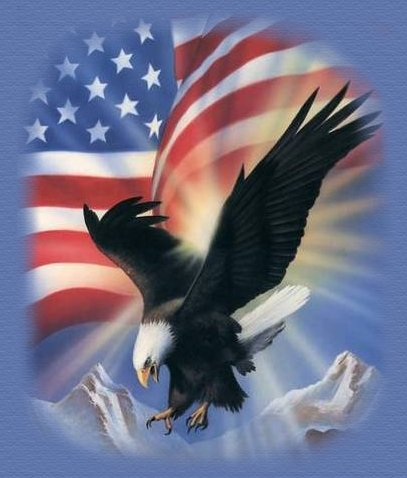 Spirit Of Freedom written by Joyce Ann Geyer with love..........