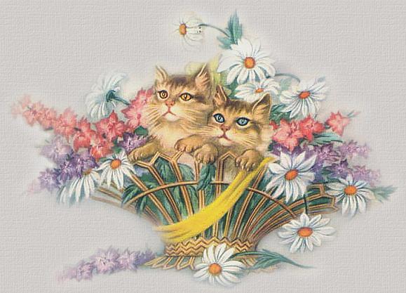 Good Morning My Sweet In German : Yahoo groups mail hindi jokes good morning my sweet