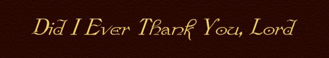 Did I ever thank you, Lord..........