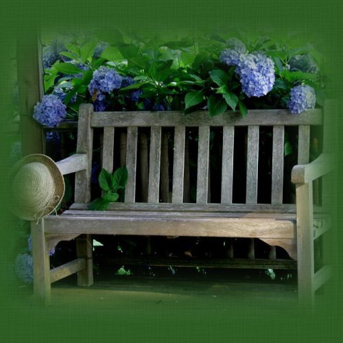 On The Garden Bench...