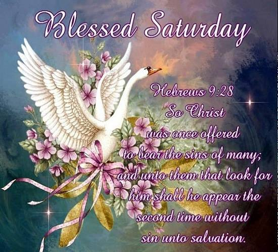 Blessed Saturday.......