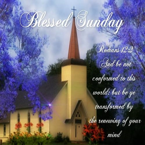 Blessed Sunday.......