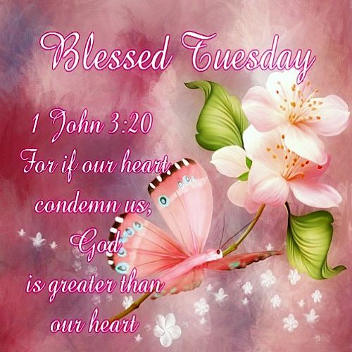Blessed Tuesday .......