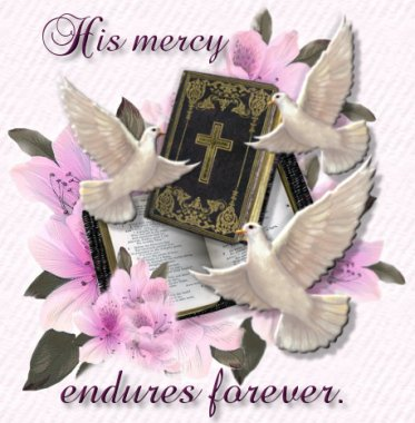 His Mercy Endures Forever written by Glenna M. Baugh with love...............